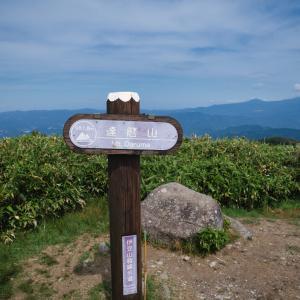 達磨山・金冠山ハイキング【前編】
