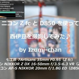 【ニコン Z fc vs D850】西伊豆の風景を撮ってみた♪