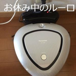 お掃除ロボット「ルーロ」が大活躍 ストレスフリーな生活