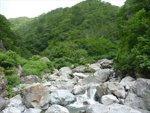 登山日誌「笹穴沢」その3 ~源頭の大草原(竹内秀樹)