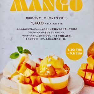 奇跡のパンケーキ リッチマンゴーと写真って難しい σ(^_^;)