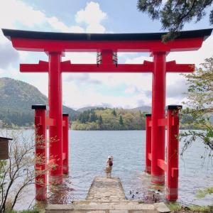 はじめての箱根旅 平和の鳥居と箱根神社と箱根海賊船 ∩^ω^∩