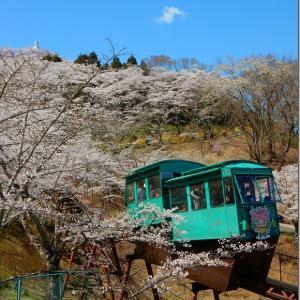 平成最後の花見 第2週(2)船岡城址公園