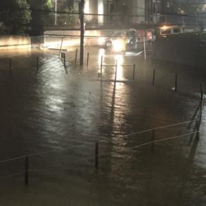 R1200GS ADVENTURE 台風19号による冠水被害 中編(冠水の原因判明)