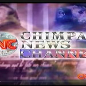 【ゴメス】チンパンニュース