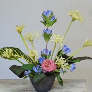 お花はささくれ立った気分を癒す