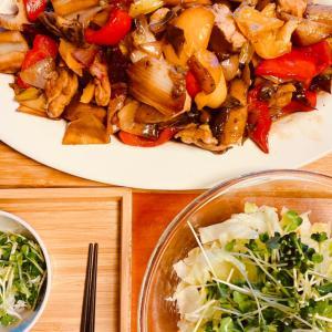 カラフル野菜と根菜とチキンの黒酢炒め