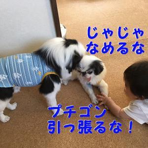 くりりん受難の日『々々』
