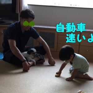2019くりりん&じゃじゃまる夏休みの絵日記①夏休みはじゃじゃの受難?