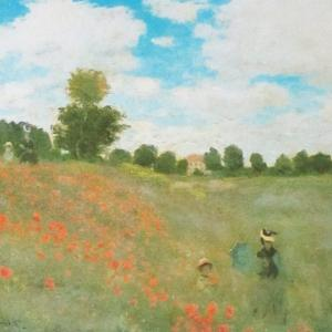 シャーレーポピー畑で、モネの『アルジャントゥイユのひなげし』ごっこ