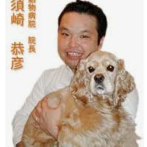 【ペット食育協会】『加齢による様々な症状へのケア方法を獣医師に学ぶ2019 』セミナーへ行ってき