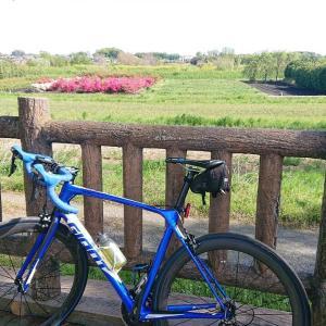 朝活~Ride2020.04.23#COVID19に負けるな!