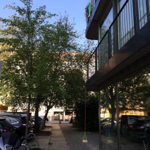 ベルリンの住宅街、バナナと引き換えにサプライズを求められる?!