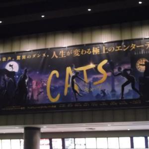 去年から楽しみに待って居た映画に行ってきました