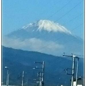 ♪Wのお祝い旅行in伊豆♪