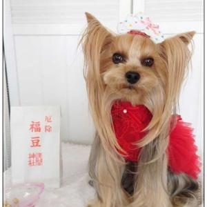 ♪赤いドレスで「福は~内」