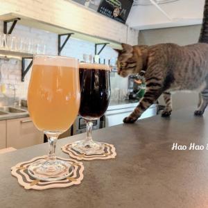 ・中山・【碧耳貓 BeerCat】ねこちゃんのいる店★ビールで乾杯&赤峰街を散策~♪