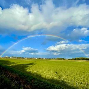 ある秋の日、大きな虹に心躍る。
