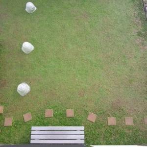 引き続き昨年の同時期と比べてみるクラピア庭