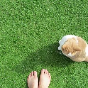 裸足で遊びたくなるお庭を作りたいそんな方へ