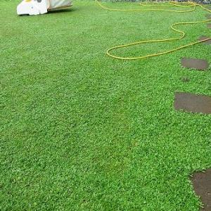 クラピア専用の芝刈り機が日本のメーカーから
