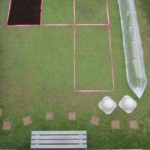 引き続き初冬の同時期と比べてみるクラピア庭