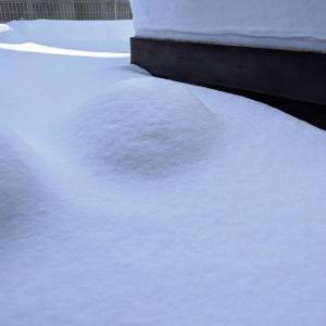 雪のクラピア庭これでは温室効果が得られない