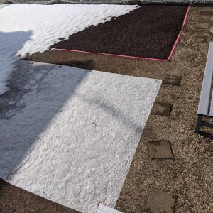 クラピア庭の雪はとけてきたが問題はここから