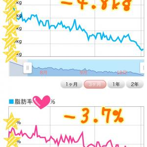 【30代体験談】食べる量が増えて、お酒もお菓子も我慢なし!3ヶ月でー2.1kg・ー2%達成!