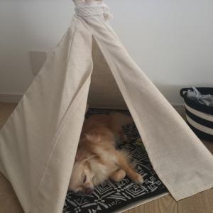 ティピーテントとハンドメイドのベッド