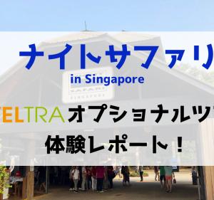 ナイトサファリシンガポールのオプショナルツアー体験してみた!VELTRA人気NO.1ツアーの全貌!