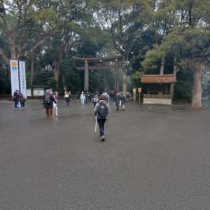 明治神宮へ行ってきました。
