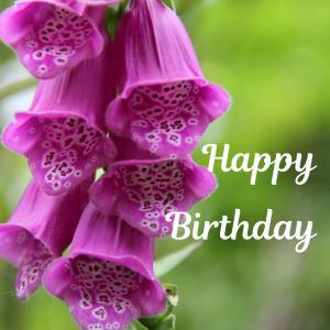Dear Birthday - 6月13日 -