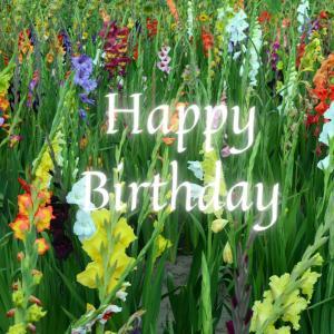 Dear Birthday - 6月14日 -