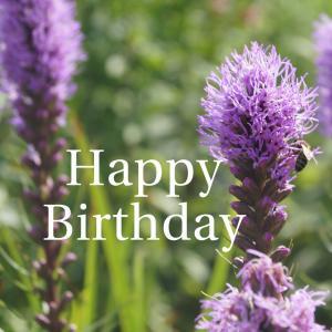 Dear Birthday - 6月16日 -