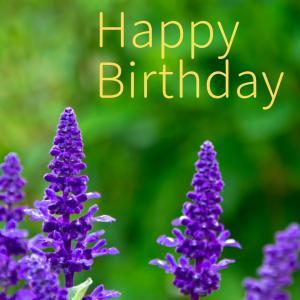 Dear Birthday - 6月20日 -