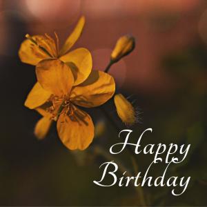 Dear Birthday - 6月21日 -