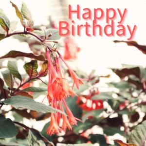 Dear Birthday - 6月22日 -