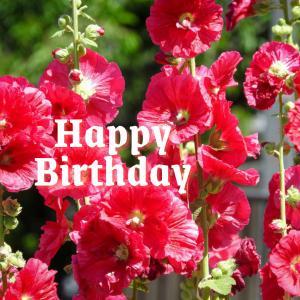Dear Birthday - 6月23日 -