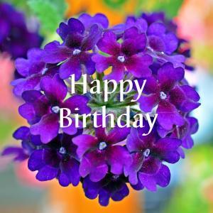 Dear Birthday - 6月24日 -