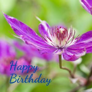 Dear Birthday - 7月1日 -