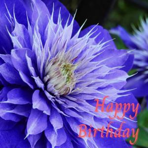 Dear Birthday - 7月2日 -