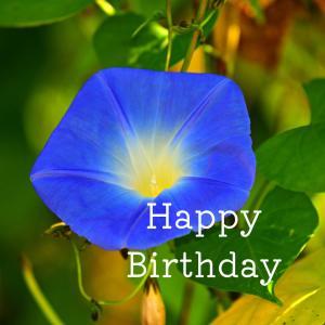 Dear Birthday - 7月6日 -