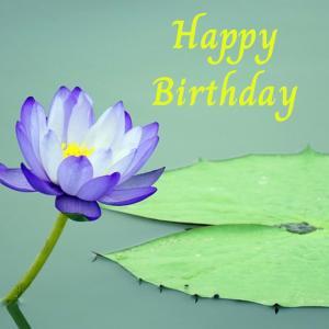 Dear Birthday - 7月7日 -