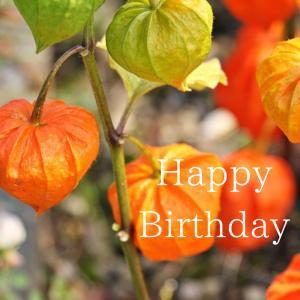 Dear Birthday - 7月8日 -
