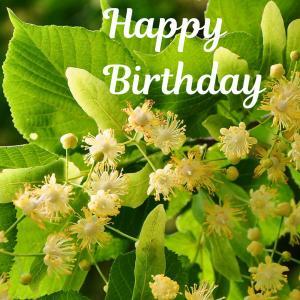 Dear Birthday - 7月9日 -