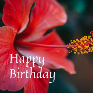 Dear Birthday - 7月11日 -