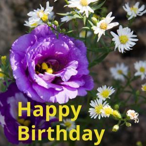 Dear Birthday - 7月12日 -