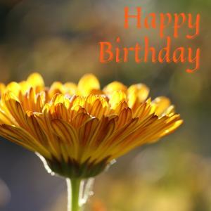 Dear Birthday - 7月18日 -