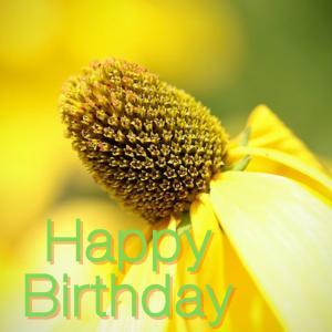 Dear Birthday - 7月21日 -